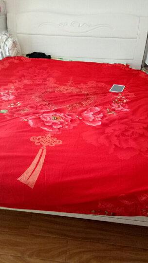 南极人 婚庆四件套全棉 纯棉磨毛大红结婚床品套件 情侣双人床单被套床上用品 爱情花开【HOT】 【四件套】2.0m床-被套220*240cm 晒单图