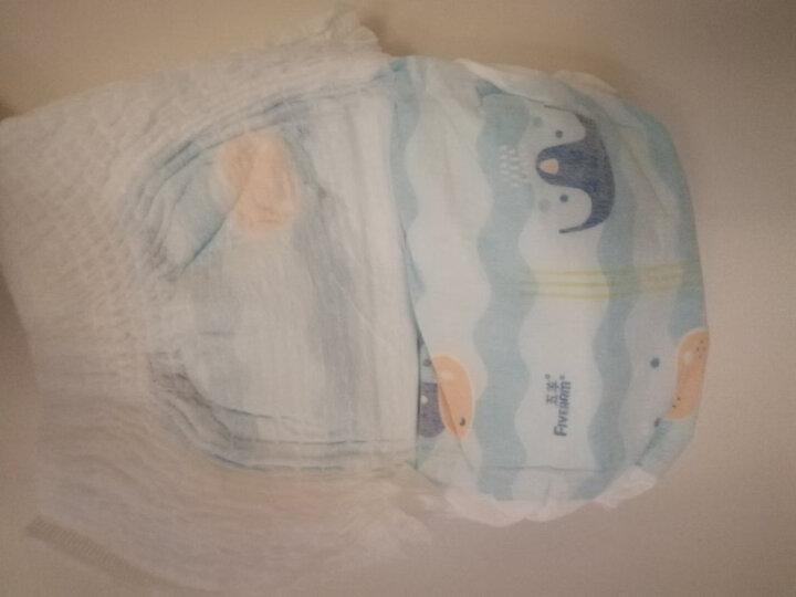 五羊FIVERAM拉拉裤 瞬吸棉成长裤 L92片 (9-14kg) 晒单图