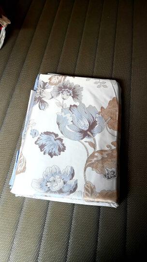 富安娜家纺 床上用品四件套纯棉全棉床品套件床单被套 小清新波点单双人 玻璃球1米8/2米床(230*229cm)粉色 晒单图