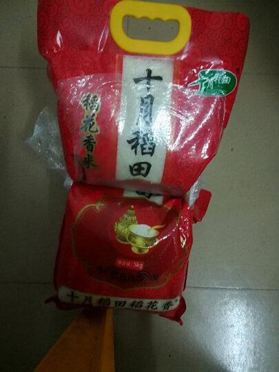 2018新米上市 十月稻田 稻花香米 东北大米 大米5kg 晒单图