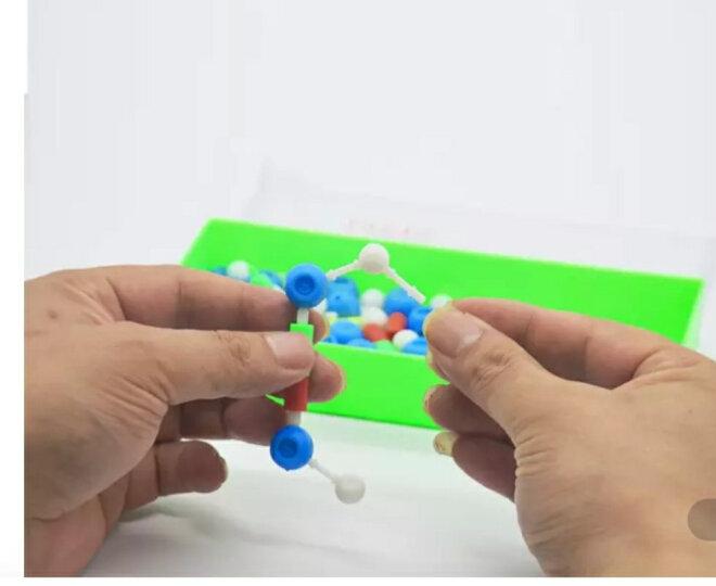 DNA模型DNA双螺旋结构模型组件拼接遗传基因和变异生物实验diy 晒单图