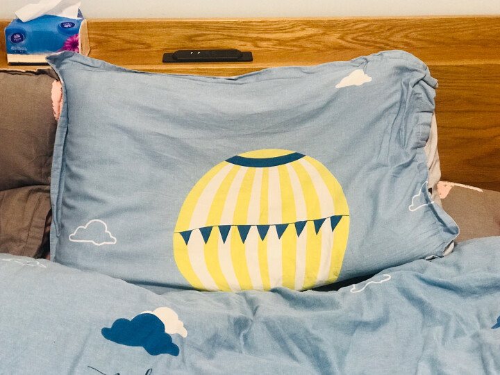 小绵羊家纺 纯棉四件套 床品被罩 床上四件套纯棉 双人床单四件套 床单被罩床上四件套 全棉被套四件套 大象的旅行 200*230cm四件套(1.5/1.8米床适用) 晒单图