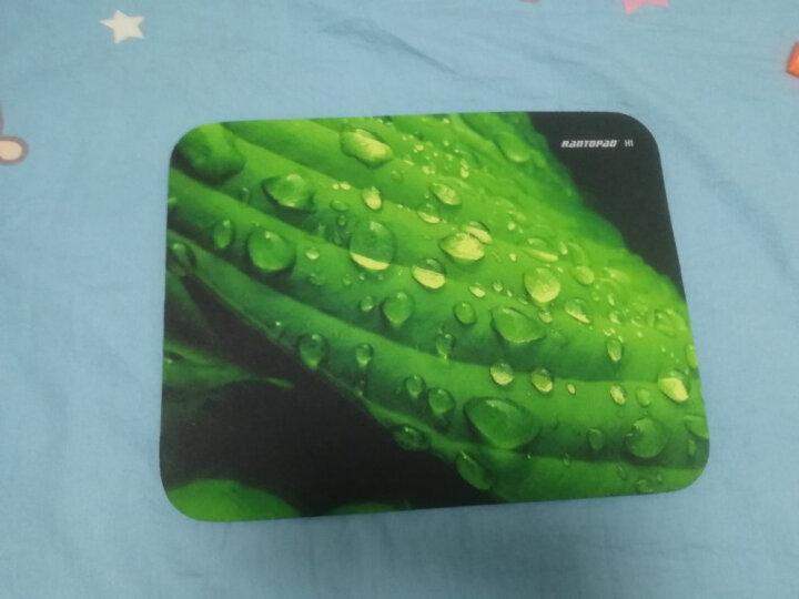 镭拓(Rantopad) H1+橡胶布面锁边包边鼠标垫小号 笔记本电脑办公鼠标垫 桌面垫 寂静岭 晒单图