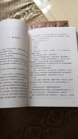 德川家康(第一辑):崛起三河(套装共4册)  晒单图