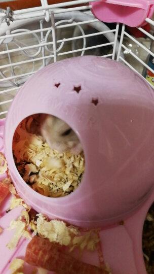 憨憨乐园 仓鼠用品木屑兔子金丝熊荷兰猪龙猫宠物松鼠除臭垫材垫料锯末刨花用品500g 晒单图