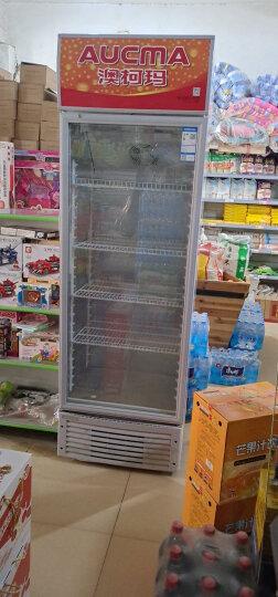 【厂家直营】澳柯玛(AUCMA) 商用冷藏展示柜 立式饮料柜超市啤酒柜 水果鲜花单门冷饮冰柜保鲜柜 晒单图