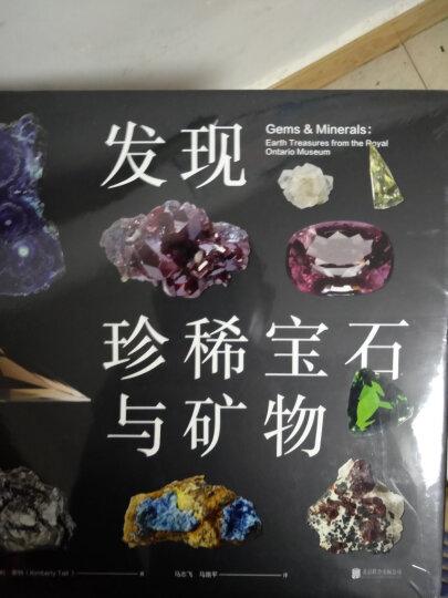 DK文学百科(全彩) 晒单图