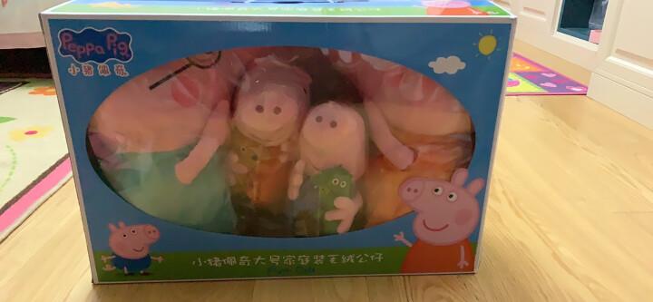 小猪佩奇毛绒玩具公仔 啥是佩奇 佩琪布娃娃儿童沙发抱枕宝宝安抚玩偶礼品儿童节生日礼物送女友男友 大号一家四口礼盒套装 晒单图