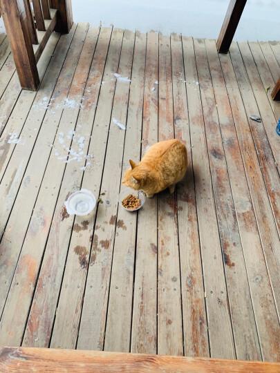 尼鲁 成猫宠物天然猫粮 美短加菲猫英国短毛猫(12个月以上) 2.5kg 晒单图