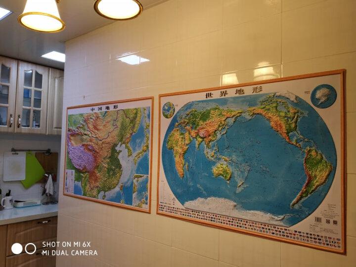 【3D精雕版】2019新版 立体地图 约1.1米*0.8米 中国地形图 世界地形 三维凹凸地图挂图 晒单图