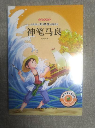 西游记(小学语文必读丛书注音美绘本) 晒单图