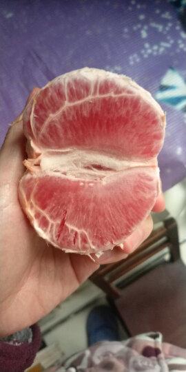 新奇士Sunkist 以色列进口红西柚 葡萄柚 精选一级中果 6粒装 单果重约230-310g 新鲜柚子水果 晒单图