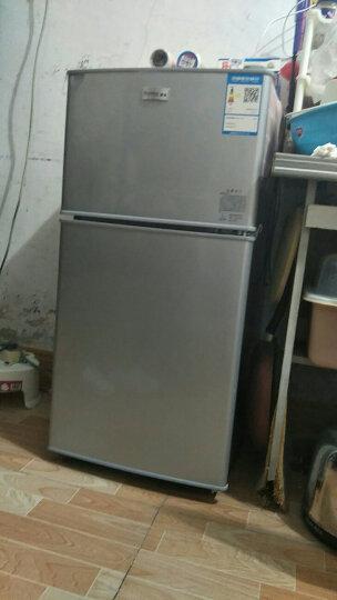 雪花(SNOWFLK)小型电冰箱自营家用静音节能迷你小冰箱 家用性价款 BCD-118 【实用升级加厚】 晒单图