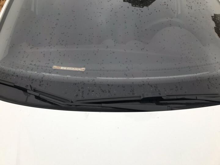 卡卡买金钻无骨雨刮器/雨刷器(一对)大众新捷达15款后/福特福睿斯19后/撼路者汽车雨刮片胶条原厂品质 24/16 晒单图