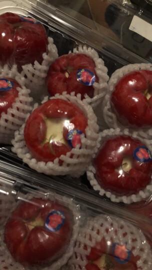 海南莲雾 500g装  单果约80-130g  新鲜水果 晒单图