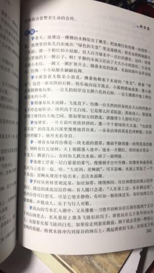 小学生现代汉语词典 彩色插图版 新课标教材版  小学生多功能词典  2020年新版中小学生专用辞书工具书字典词典 晒单图