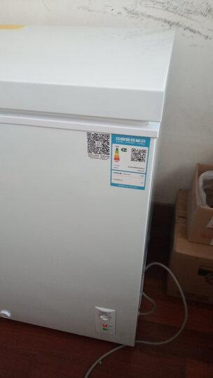 星星(XINGX) 90升 家用小冰柜 冷藏冷冻转换小型迷你冷柜 单温母婴冰箱 BD/BC-90E 晒单图
