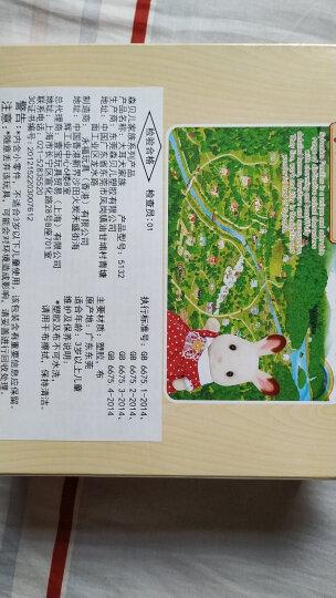 日本森贝儿家族公仔儿童玩具森林动物巧克力兔玩偶女孩礼物过家家娃娃家族套装 男孩女孩生日 儿童节礼物 蜜熊家族5059 晒单图