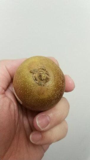 Zespri佳沛 意大利阳光金奇异果 6个装 经典爆款装 单果重约80-100g 生鲜进口水果 晒单图