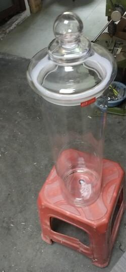 志方益直筒泡酒玻璃瓶子带龙头家用泡酒瓶无铅泡酒罐密封泡酒玻璃瓶酿酒罐酒桶 15斤装+底座 晒单图
