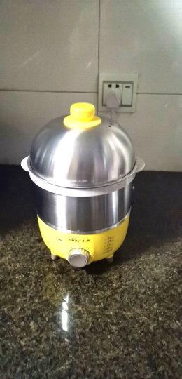 小熊(Bear)煮蛋器 双层定时全不锈钢蒸蛋器自动断电蒸鸡蛋羹神器迷你鸡蛋器早餐机小型官方旗舰店 晒单图