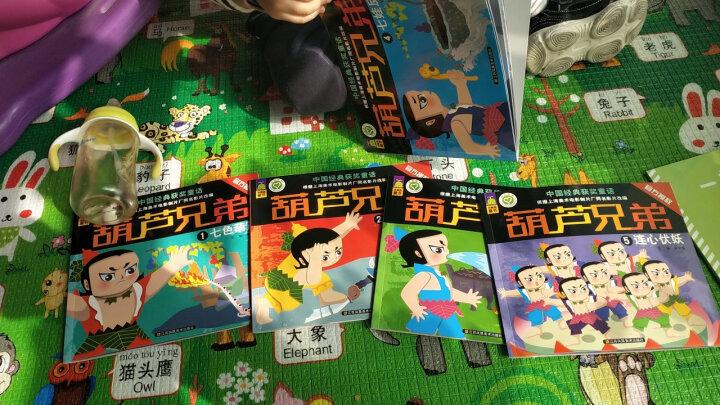 【正版包邮】葫芦兄弟图书 注音版 全套5册 葫芦娃图书 3-6岁儿童卡通动漫 中国经典获奖童话绘本 晒单图