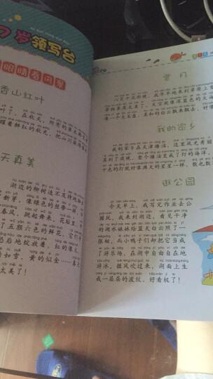 小学生同步作文3年级 黄冈作文 班主任推荐作文书素材辅导三年级8-9岁适用作文大全 晒单图
