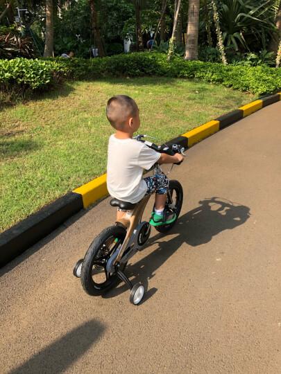 【可加长】健儿(jianer)儿童自行车男女小孩单车12/14/16寸 概念豪华款-香槟金(折叠车把双碟刹) 16寸 晒单图