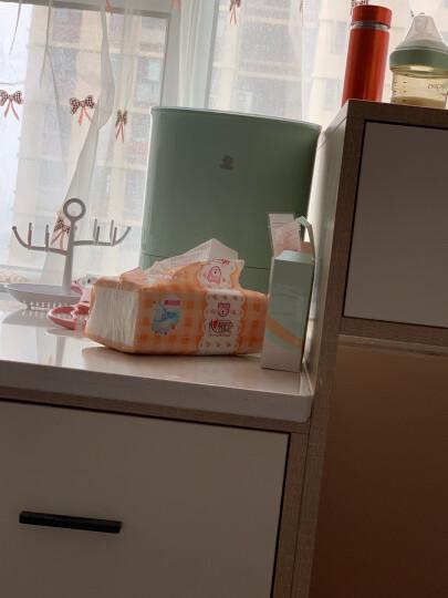小白熊(Snow Bear)婴儿奶瓶消毒烘干器 多功能带烘干消毒器 HL-0885 晒单图