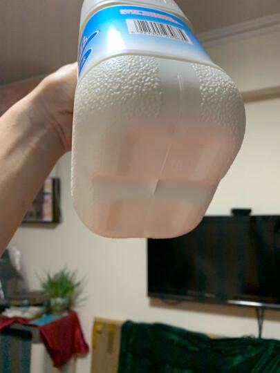 三元 原味 酸奶酸牛奶 1.8kg 晒单图
