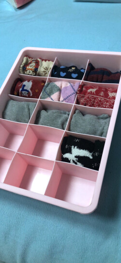 百家好世内衣收纳盒内衣裤袜盒有盖储物箱多功能收纳箱装文胸盒(单个装 配置可选) 蓝色15格无盖 晒单图