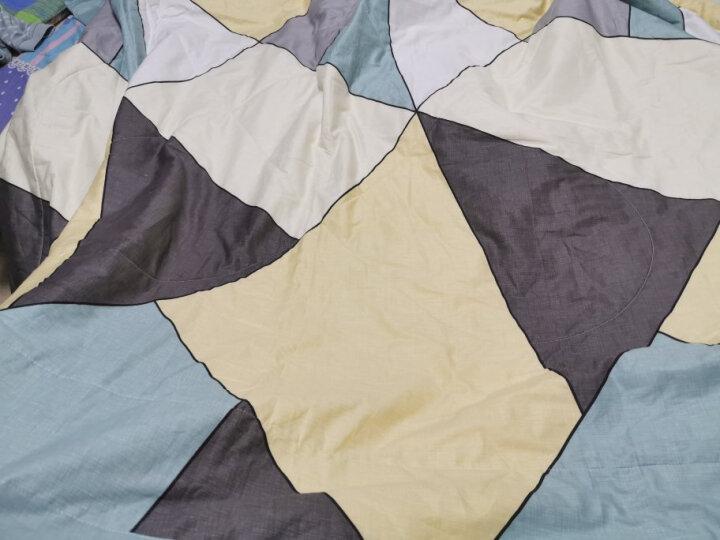 里外全棉空调被棉花被夏凉被春秋被芯可机洗薄被子暖气被儿童学生被子 恐龙乐园 150*200cm/约2斤【棉花填充】 晒单图