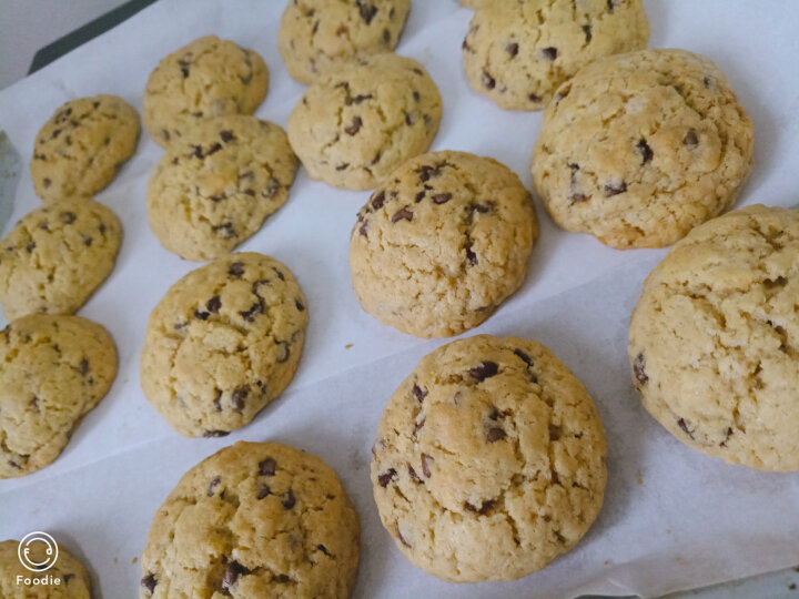 舒可曼 巧克力豆 耐高温 可可豆 曲奇饼干装饰 烘焙原料 100g 晒单图