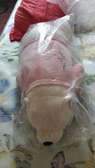 爱尚熊毛绒玩具抱枕娃娃北极熊大号长条抱枕公仔玩偶布娃娃女孩睡觉抱枕靠垫玩具女孩生日礼物送女生70cm 晒单图