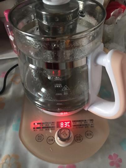 康佳(KONKA)养生壶加厚玻璃1.8L烧水壶 全自动电水壶304不锈钢中药壶多功能煮茶壶 KHK-1836 晒单图