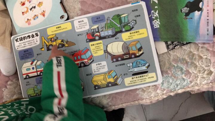 小小探险家翻翻书:身体认知篇(套装共2册) 晒单图