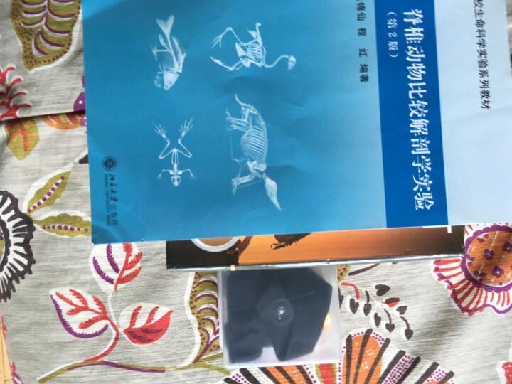 高等院校生命科学实验系列教材:脊椎动物比较解剖学实验(第2版) 晒单图