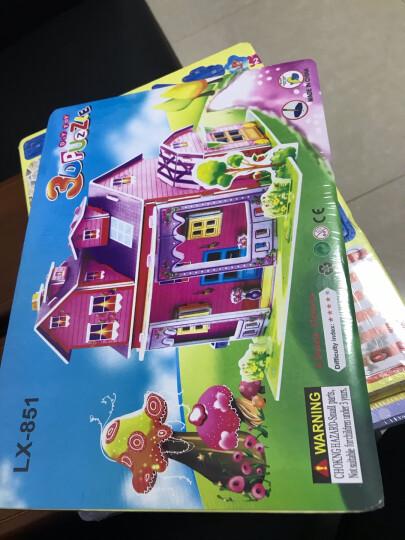 3D立体纸质立体拼图 儿童玩具女孩智力手工小屋建筑模型 8个女孩款式不重复 晒单图