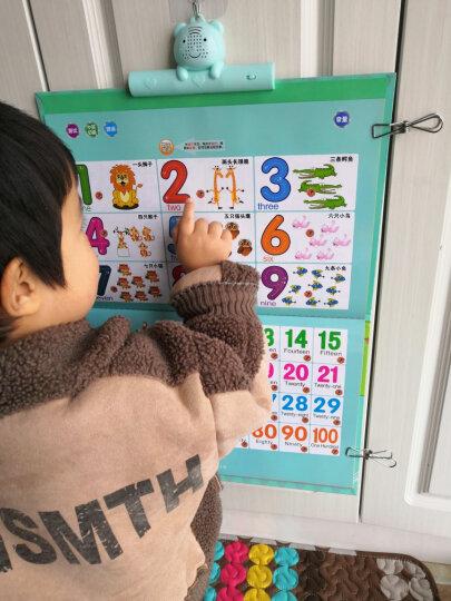 猫贝乐 第二代有声挂图套装看图学习识字拼音英文识数字 宝宝点读幼儿益智早教儿童玩具1-3-6岁 故事音乐 晒单图