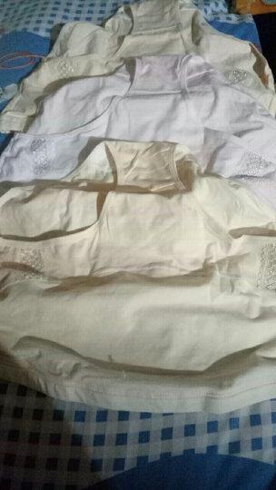 婧麒孕妇内裤可调节纯棉托腹高腰孕妇内裤3条装四季款 2肤+1粉XL码jq9001 晒单图