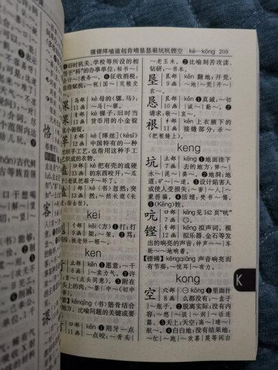21世纪小学生工具书系列:小学生词语词典 晒单图