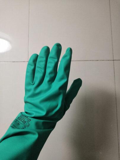代尔塔 洗碗家务防护丁腈手套 洗蔬菜水果洗衣服厨房油渍清洗 防油防水易清洗 手指防滑纹路201802 舒适型 8号(M) 晒单图