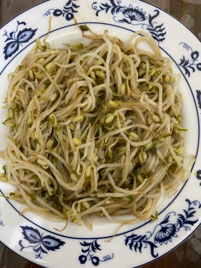 天地粮人 有机 绿豆 1.25kg(可发豆芽 可打豆浆 东北 粗粮杂粮 大米伴侣) 晒单图