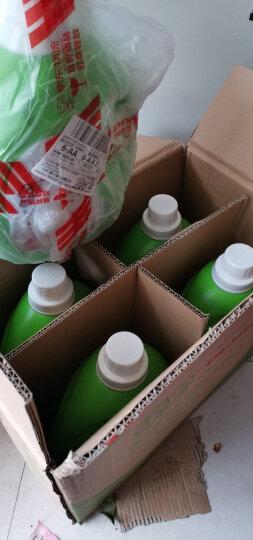 绿伞 洗衣液袋装3kg 熏衣芳菲 机洗手洗 晒单图