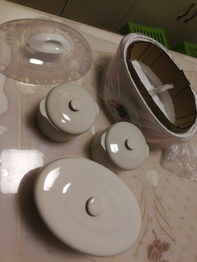 天际(TONZE)电炖锅隔水炖 煮粥煲汤1锅3胆DDZ-16BW 1.6L 晒单图