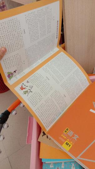 高中语文基础知识手册2020薛金星高一二高三高考古诗文言文全解工具书知识大全第二十五25次修订新版 晒单图