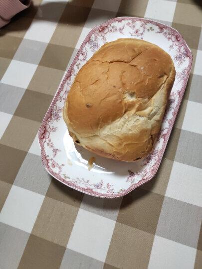 东菱(Donlim)烤面包机家用 早餐机 全自动和面机 涡轮电机驱动仿古法手工揉面DL-T15W 晒单图
