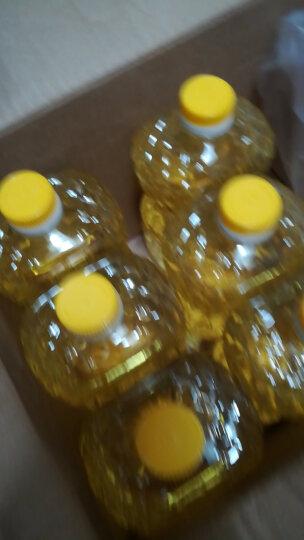 加拿大原装进口 Canaplus  非转基因压榨芥花籽油食用油 低芥酸菜籽油 946ml 晒单图