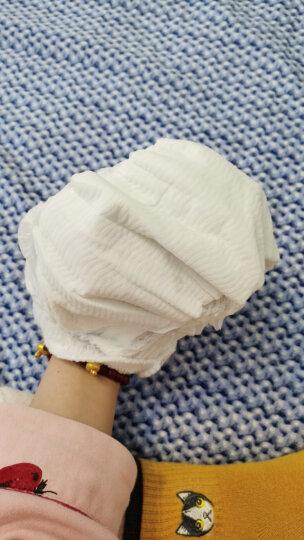 泰迪熊拉拉裤 臻薄宠爱活力学步裤宝宝成长裤 L68片(建议9-14kg) 晒单图