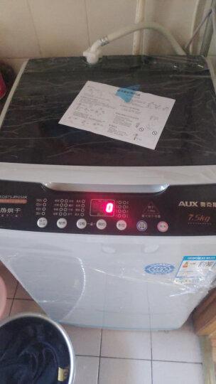 奥克斯(AUX)7.5公斤仿手洗家用宿舍波轮全自动洗衣机 热烘干洗烘一体波轮小型 XQB62-A1518L 透明茶色(紫光照射) 晒单图